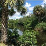 Immobilienangebote Mariners Cove Wohnungen North Fort Myers mit traumhaftem Wasserblick zu verkaufen